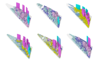 Verebes-Umekita-Programme-Diagrmas-models